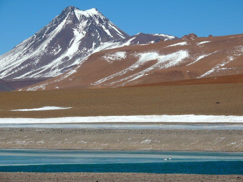 Viaggio in auto in Cile: la laguna Miscanti.