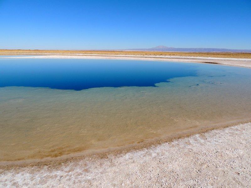 Viaggio in auto in Cile: una laguna nel Salar de Atacama.