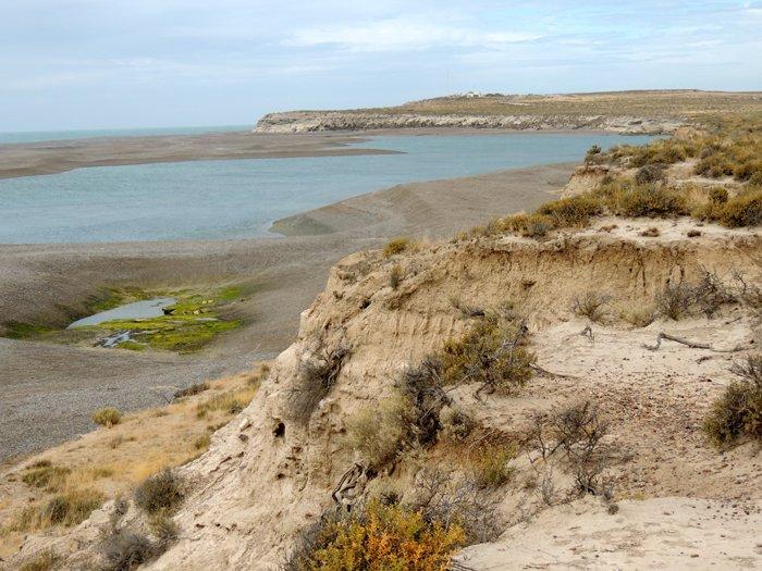 Itinerario di viaggio in Patagonia: la costa della Penisola di Valdés.