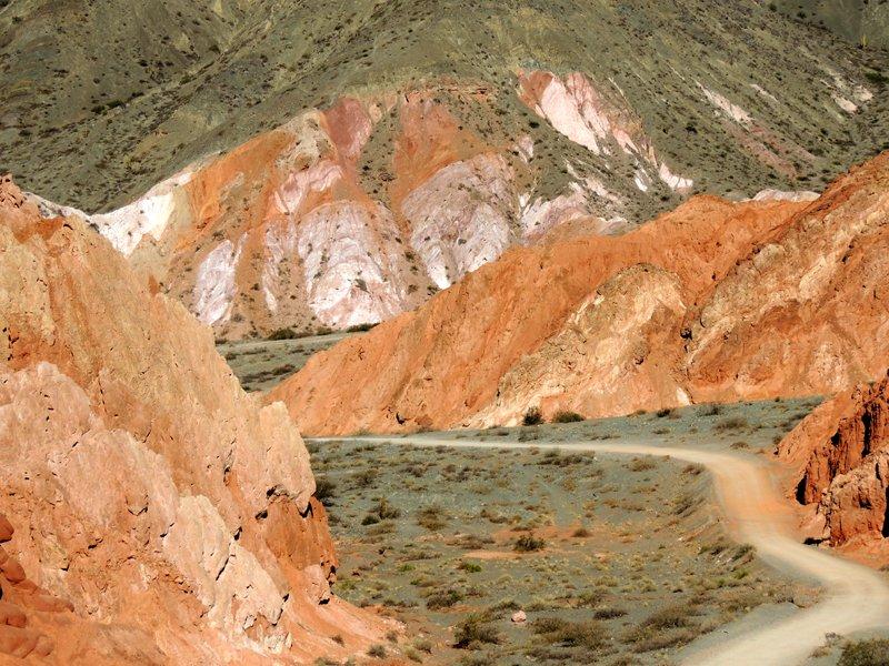 Viaggio in auto in Argentina: la strada che corre all'interno del paseo de los colorados.