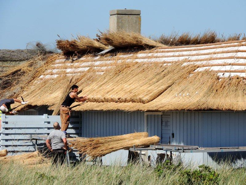 Operai costruiscono un tetto di paglia
